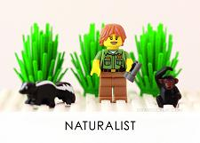 LEGO Diagnostic Card, Naturalist