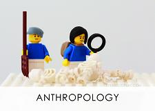 LEGO Diagnostic Card, Anthropology