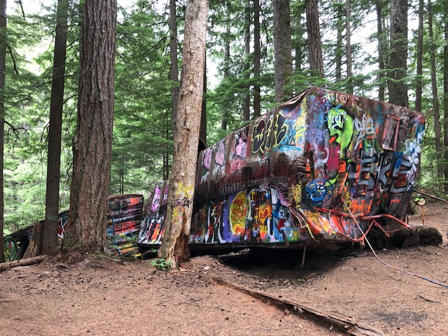 Old Graffiti Forest