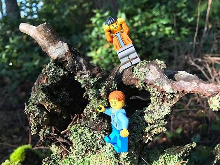 LEGO® MiniFigs in the Forest